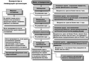 Stadii bankrotstva organizatsiii