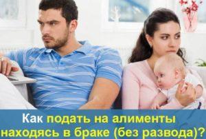 Vzyskanie alimentov bez razvoda