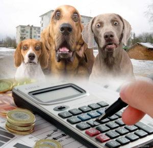 3 45 300x291 - Налог на домашних животных в России в 2019 году