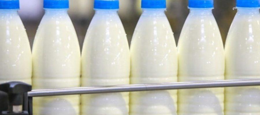 moloka 1 900x400 - Россельхознадзор о запрете на посадку картошки и ввоза молока из Белоруссии